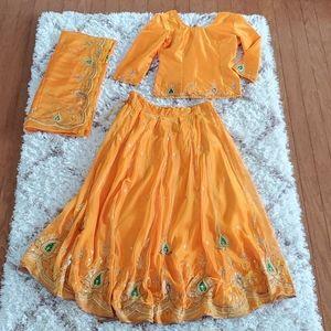 Traditional Indian Sarree Sari